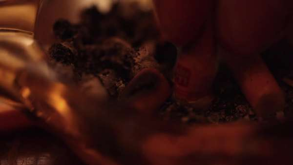 Close-up of cigarette being put out in ash tray Royalty-free stock video