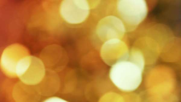 Bokeh Lights Background. Created in camera Royalty-free stock video
