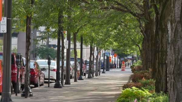 A tree-lined street in downtown Cleveland, Ohio. Royalty-free stock video