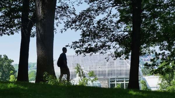 PITTSBURGH, PA - Circa May, 2015 - A silhouetted student walks past Phipps Conservatory and Botanical Gardens in Schenley Park. Royalty-free stock video