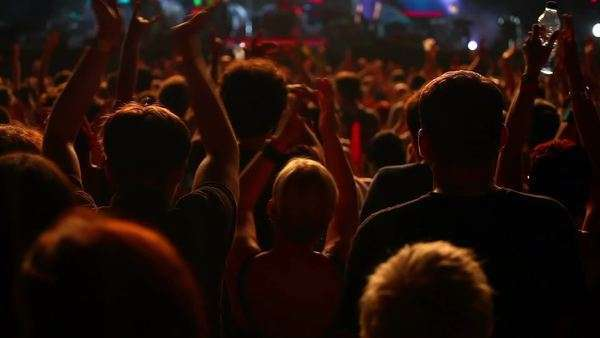 Crowd at the concert, rear view Royalty-free stock video