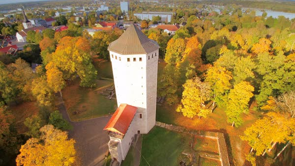 The big tower on the forest in Paide, Estonia Royalty-free stock video