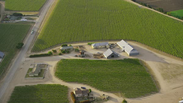 Aerial shot of farm ranch winery. California farming in beautiful West coast countryside. Napa Valley wine country. Royalty-free stock video