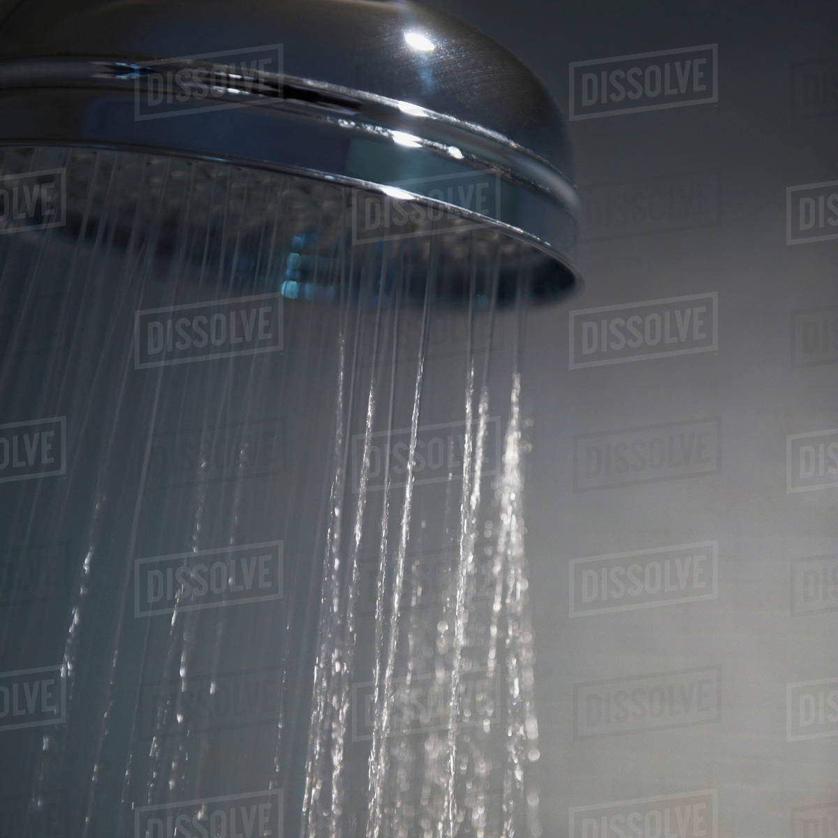 Water Coming Out Of A Showerhead - Stock Photo - Dissolve