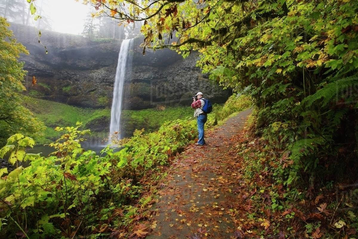 Silver Falls State Park, Oregon, United States Of America; Hiker Along South Falls In Autumn Royalty-free stock photo