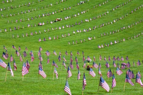 American Flags In A Graveyard During Memorial Day, Oregon, Usa Royalty-free stock photo