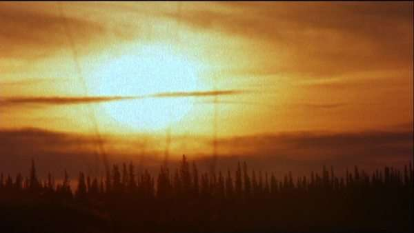 Wide shot of sun rising above a boreal forest Royalty-free stock video