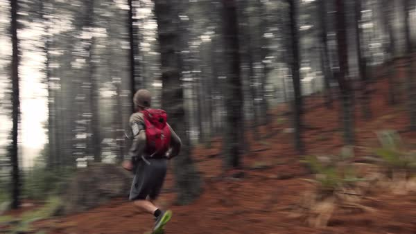 Man running and exercising on misty mountain forest Royalty-free stock video