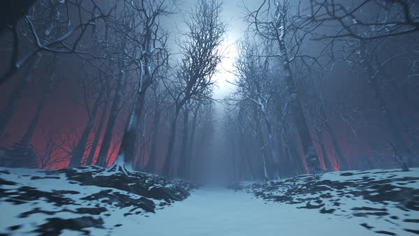 Seamless looping animation of winter forest path in a fog Royalty-free stock video