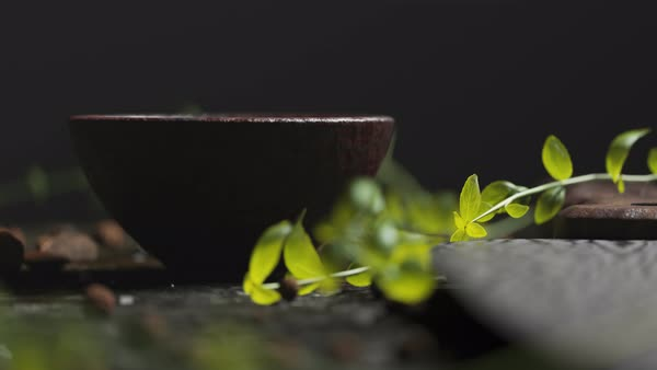 Close-up shot on sprig of fresh herbs and wooden bowl on old wooden table. Royalty-free stock video