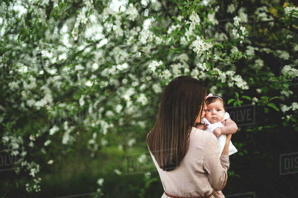 Over shoulder portrait of woman kissing baby daughter by garden apple blossom Royalty-free stock photo