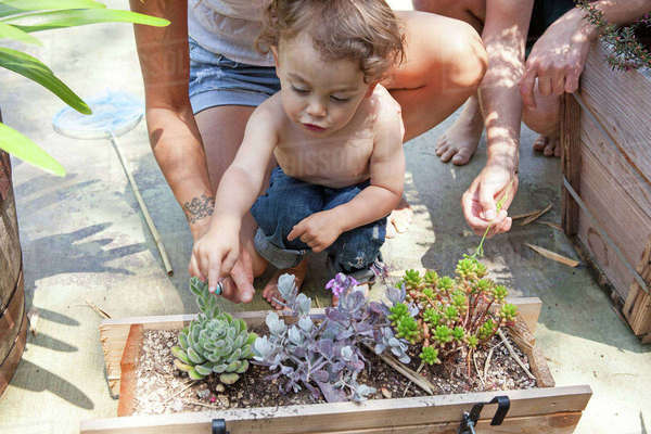Boy pointing at plants in container on patio Royalty-free stock photo