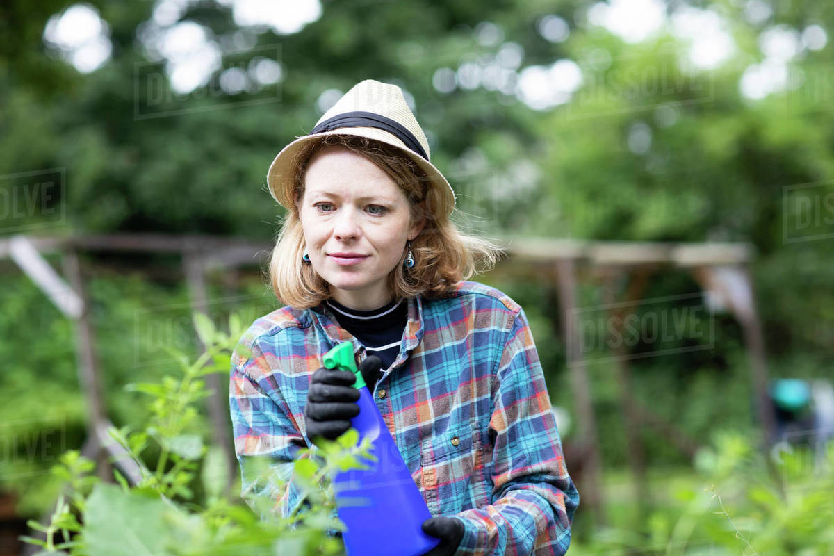 Mid adult woman spraying plants in her garden, selective focus Royalty-free stock photo