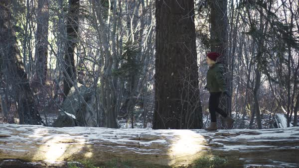A young woman walks across a large, snow covered log in the middle of the forest Royalty-free stock video
