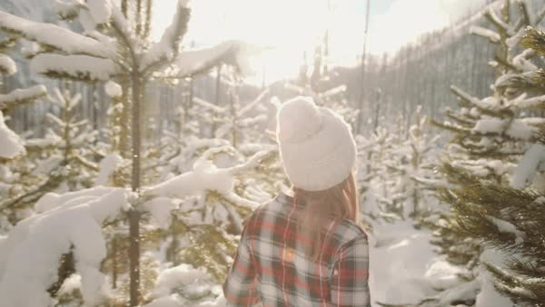 Medium shot of a woman walking in a winter forest Royalty-free stock video