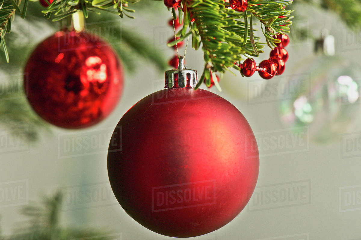 Christmas Baubles.Christmas Baubles Hanging From Christmas Tree Stock Photo