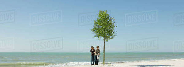 Children watering tree growing on beach Royalty-free stock photo