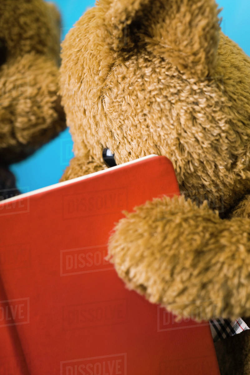 teddy bear reading book close up stock photo dissolve