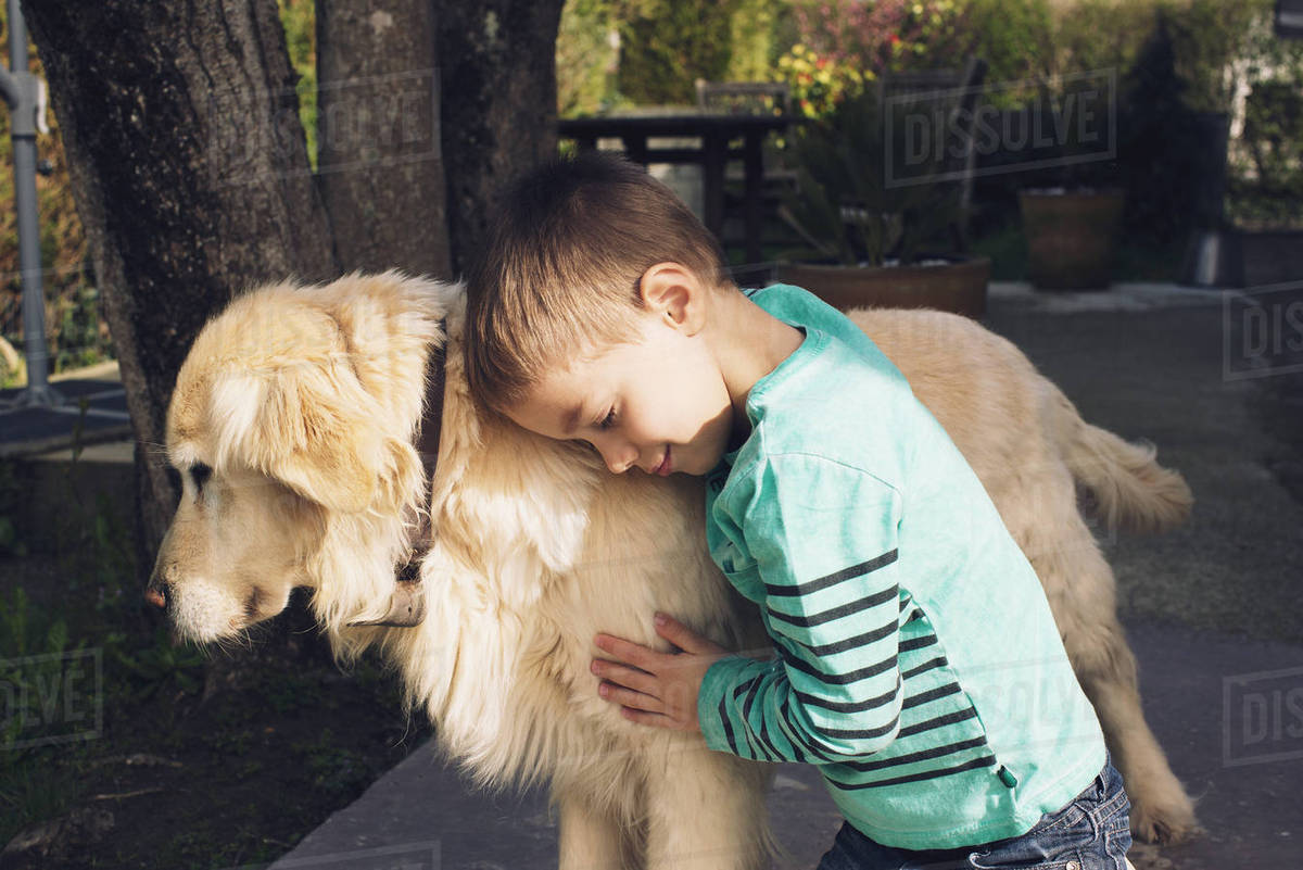 Boy with family dog Royalty-free stock photo