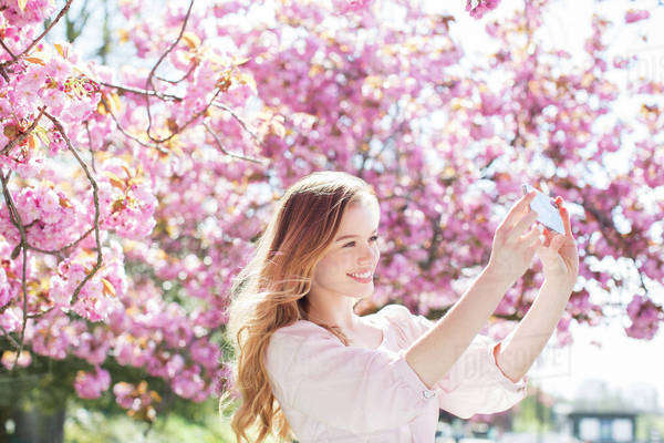 Woman taking self-portrait under tree with pink blossoms Royalty-free stock photo