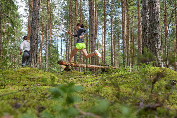 Runner jumping over fallen log in woods Royalty-free stock photo