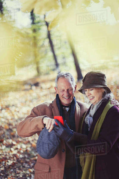 Grandparents using cell phone in autumn park Royalty-free stock photo