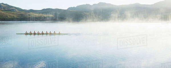 Rowing team rowing scull on lake Royalty-free stock photo