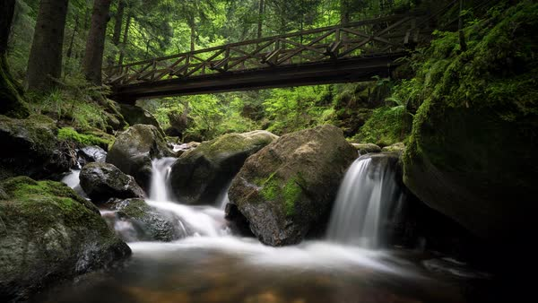 Scenic view of a stream flowing under footbridge in forest Royalty-free stock video