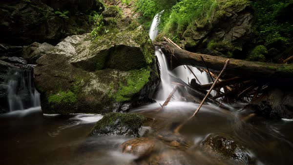 Scenic view of a stream flowing among mossy rocks in forest Royalty-free stock video