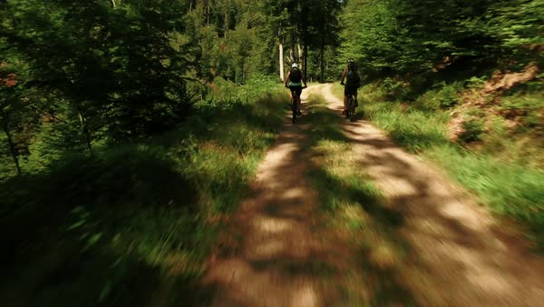 Wide shot of two mountain bikers on forest path Royalty-free stock video