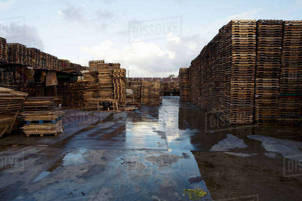Stacks of wood pallets Royalty-free stock photo