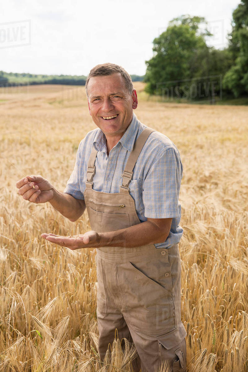 Portrait of happy farmer holding wheat while standing at field in farm Royalty-free stock photo