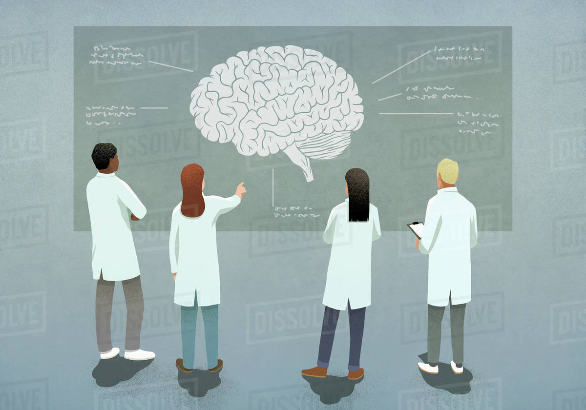 Scientists discussing brain diagram Royalty-free stock photo