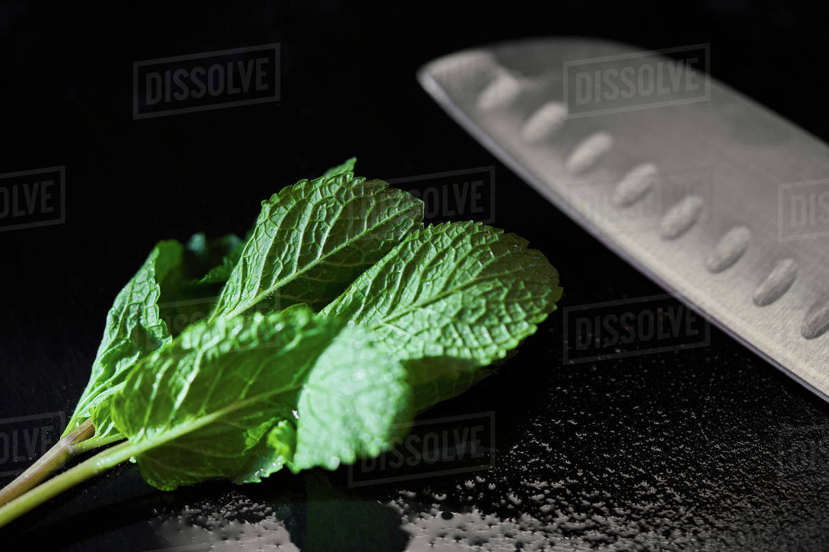 Close up mint leaf and knife Royalty-free stock photo