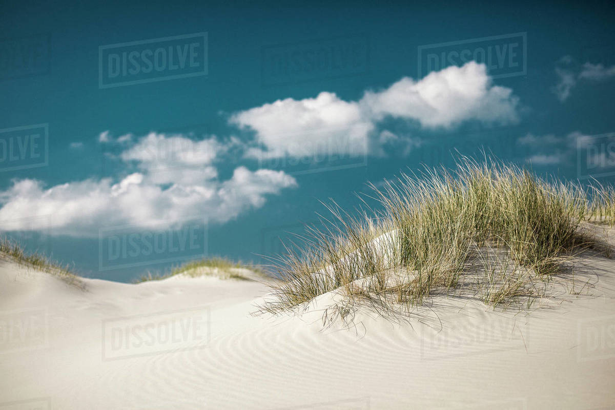 Idyllic sand dunes under sunny blue sky with clouds, Nebel, Schleswig Holstein, Germany Royalty-free stock photo